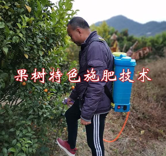 果树特色施肥技术