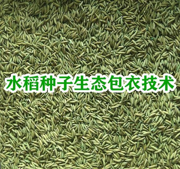 水稻种子生态包衣技术