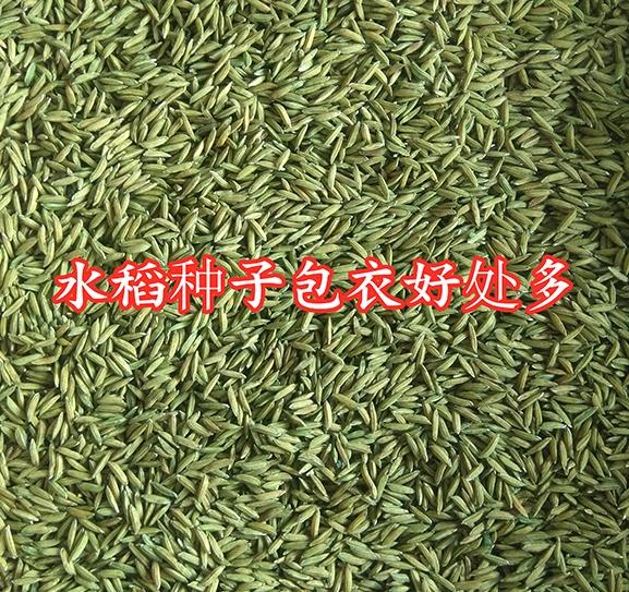 水稻种子包衣好处多
