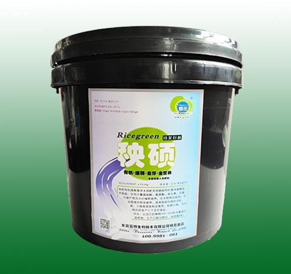 使用我公司肥料技术 广州鳌头800亩优良丝苗米喜获丰收