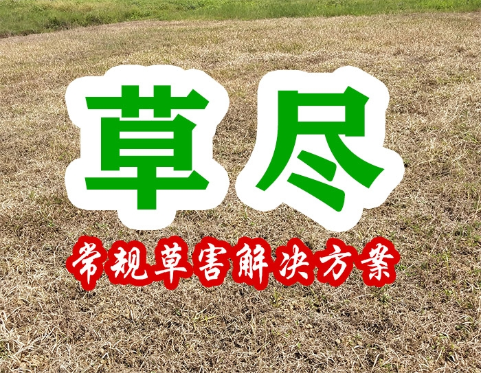 草尽(常规草害解决方案)