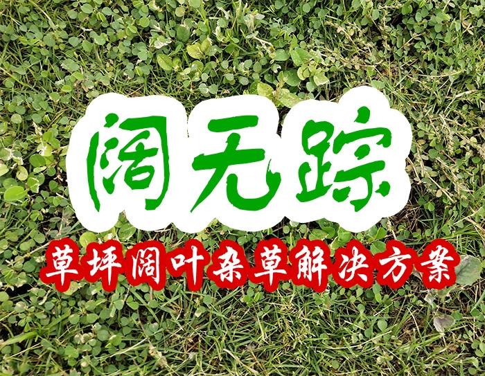 阔无踪(草坪阔叶杂草解决方案)