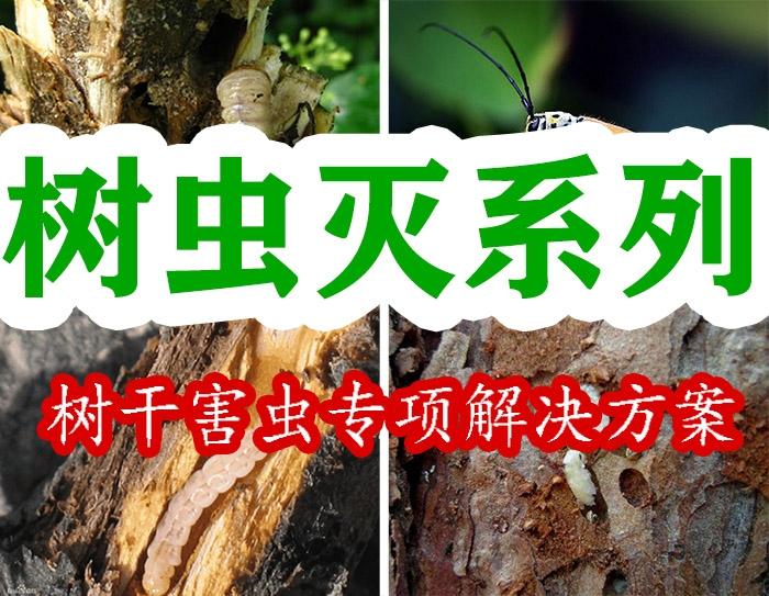 树虫灭(蛀干害虫专项解决方案)
